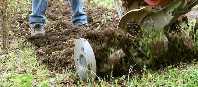 aerate soil during tree planting