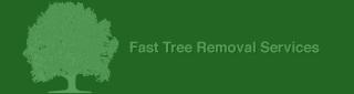fast tree service atlanta