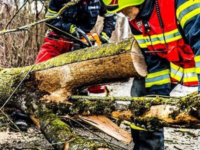 Storm damaged fallen tree emergency removal
