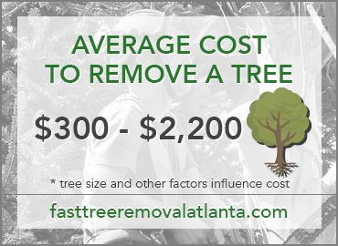 Tree removal average cost