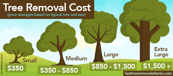 Cost of tree removal by size